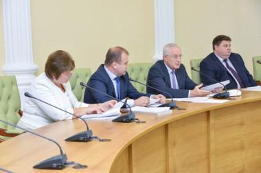 Депутаты утвердили проект Устава Большого Подольска