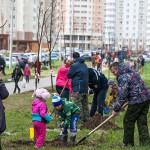 23 апреля в микрорайоне «Кузнечики» высажены более 200 деревьев и 400 декоративных кустарников