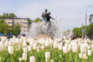 На клумбах Большого Подольска цветут 114 тысяч сортовых тюльпанов