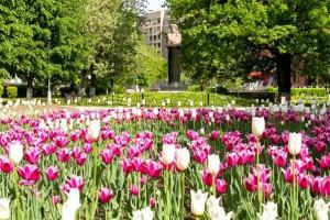 Городской округ Подольск 6 июня отмечает 218 лет со дня рождения Александра Сергеевича Пушкина