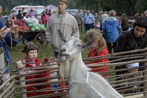 В рамках фестиваля «Славянское подворье-2018» на Певческом поле поселка Дубровицы будет работать крестьянский дворик
