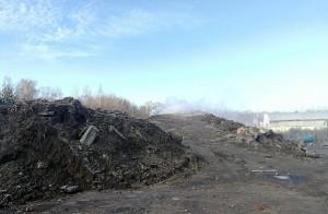 Минэкологии: суд обязал подольское предприятие очистить от мусора территорию складской базы