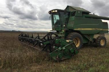 Более 380 тонн зерна собрали в Городском округе Подольск в 2019 году