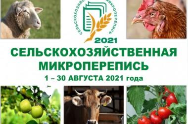 В России началась сельскохозяйственная микроперепись